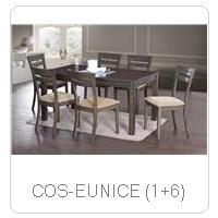 COS-EUNICE (1+6)